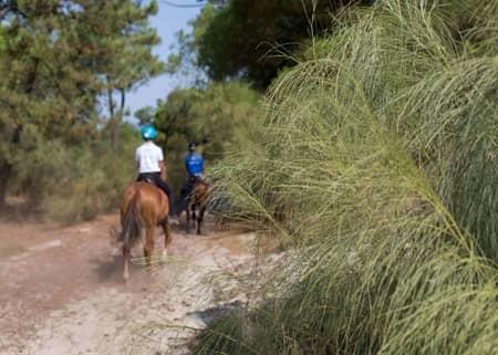passeios a cavalo em Troia